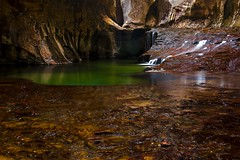 Subway Pools (daveinhst) Tags: water pool creek subway utah waterfall sandstone staircase backcountry zion emerald 294 070112