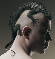 lizard haircut (Flatboy) Tags: