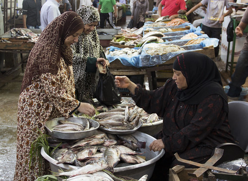Private Sector / Women fish sellers in fish market, Cairo, Egypt. Photo by Samuel Stacey, 2012.