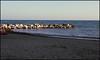 Alba Litorale Trapani (ale210708) Tags: sea italy dawn italia mare alba sicily sicilia trapani litorale
