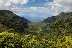 Kalalau Valley (Tōn) Tags: ocean trees sea seascape mountains nature clouds landscape island volcano hawaii view unitedstates pacific cliffs foliage pacificocean valley kauai kalalauvalley hi overlook kalalaubeach kaaalahinaridge kaleparidge tonyvanlecom