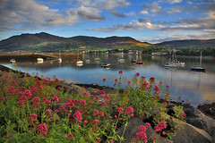 Warrenpoint colours (Alan10eden) Tags: flowers light sunset mountains port canon reflections boats evening day colours cloudy harbour sigma northernireland 1770 ulster countydown carlingfordlough warrenpoint 60d