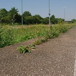 Waldenburger Bahnhof