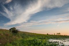 Springbrook Prairie (jrobfoto.com) Tags: sunset sky lake water clouds landscape illinois unitedstates olympus prairie naperville omd springbrook em5 microfourthirds jrobfotocom omdem5