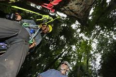 _H3C9676 (rogerbtree) Tags: trees portland ropes bigtrees treeclimbing arborist oldgrowthforest arboriculture recreationaltreeclimbing ropeaccessclimbing