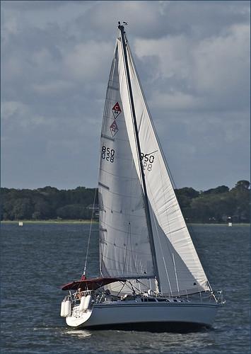 sailboat charlestonsc roncogswell sailboatcharlestonharborscsaturdayafternoon sailboatcharlestonharborsc