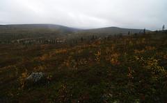 To the south from Sarvioja (Northern Adventures) Tags: autumn fall trekking trek suomi finland nationalpark hiking north hike september backpacking lapland backpack treck lappi trecking urhokekkonen ruska sápmi deepnorth urhokekkosen