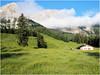Kührointalm (eifelyeti110) Tags: mountain alps berg germany bayern deutschland bavaria europa europe peak mount alm alpen gebirge gipfel yourcountry kuehroint