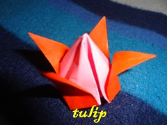 origami (yourlalabear) Tags: origami collection origamis origamidesign easyorigami