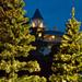 Christmas Tree Lighting 5