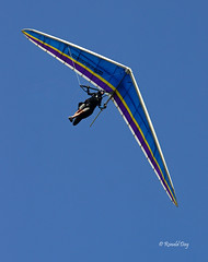 Hang Glider ~Dean Miller~ (Ron1535) Tags: golden colorado wing sail roll pitch soaring glider lookoutmountain pilots thermals mtzion hanggliding deltaplane yaw rigidwing airframe hanggliders freeflight windcurrents freeflyers glideraircraft soaringaircraft