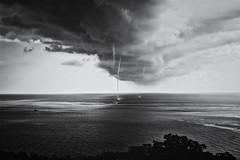 (fancy flight) Tags: bw nikon tornado