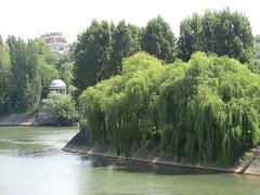 CIMG9062 (Akieboy) Tags: trees island esplanadedeladefense