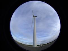 Wind Turbine, Te Apiti Wind Farm, Manawatu, New Zealand