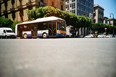 ... (icomewhenieatcaponata) Tags: camera italy bus film analog 35mm toy lomo lca lomography toycamera sicily palermo ratseyeview peppopeppo puddicinu lomographycn100 cockroachsview