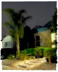 Enter the Casbah (Ron Rothbart) Tags: california elcerrito npy house lights night nightphotography palmtree
