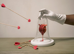 Under Glass (dream24seven) Tags: heart glass case protect love risk safety arrows red bloody white glove safe dome encased surreal