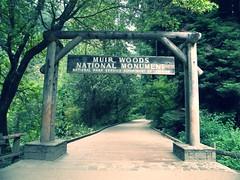 Muir Woods (pooolam) Tags: muirwoods johnmuir sanfrancisco marinheadlands bayarea hiking travel adventure summer nationalpark goldengatebridge nationalmonument science