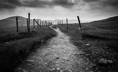 Gloomy to Edale (mikenewman921) Tags: peak district derbyshire landscape edale