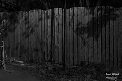 Clture (Denis Hbert) Tags: denishbert anthropogeo faubourgmlasse centresud montreal montral qubec quebec canada monochrome montrealnight montrealcentresudnight montrealfaubourgmlassenight ngc newtopographer newtopographics newtopographic noiretblanc nuitcentresud nuitfaubourgmlasse nuitmontreal nuit bw blackandwhite blackwhite black blanc nb ville city clture extrieur avril april 2016 shadowy shadows shadow harmony rue steet ombrage ombre urban urbaine urbain tranquilit calme canon quiet fence door porte portal portail