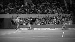 Rio 2016 (Henri Koga) Tags: 2016summerolympics henrikoga olympicgames rio2016 riodejaneiro summerolympicgames brasil brazil olympics tennis thomasbellucci