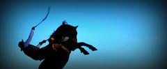 Jineteando en el cielo (Eduardo Amorim) Tags: gaucho gauchos gacho gachos jineteada gineteada cavalos caballos horses chevaux cavalli pferde caballo horse cheval cavallo pferd cavalo cavall    basto bastoconencimera bastoaberto sauce corrientes provnciadecorrientes corrientesprovince argentina sudamrica sdamerika suramrica amricadosul southamerica amriquedusud americameridionale amricadelsur americadelsud eduardoamorim