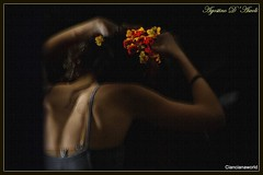 I fiori tra i capelli - Agosto-2016 (agostinodascoli) Tags: agostinodascoli nikon nikkor cianciana sicilia texture art digitalart donna fiori photoshop photopainting nikonclubit