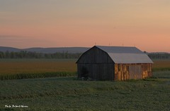 Un matin du mois d'aot sur les champs... / A summer morning in the countryside... (Pentax_clic) Tags: imgp6449 grange barn aout 2016 pentax kr matin robert warren harwood vaudreuil quebec