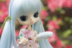 Happy B-day, Mimmy!  (Brie G.) Tags: byul sucre byulsucre doll groove angelicpretty hamster cottoncandy obitsu