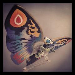 Rainbow Mothra (WEBmikey) Tags: toys kaiju bandai mothra godzilla japan