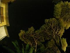 A sky full of stars (Cheshire Cat's Friend) Tags: sky stars pinewood nightshot principina mare maremma grosseto toscana gopro stelle pineta
