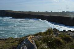 costa llanes (missemeyas) Tags: costa llanes acantilados olas