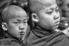 lo sguardo (mat56.) Tags: ritratto ritratti monastero monastery monaci monks monaco piccoli little giovani youngs sguardo look bianco black nero white monocromo monochrome amarapura myanmar mahagandayon birmania burma asia buddismo monk antonio romei mat56