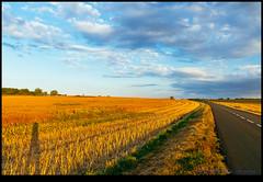 160723-9932-XM1.jpg (hopeless128) Tags: self me road shadiow fields sky eurotrip 2016 fileds france clouds saintangeau aquitainelimousinpoitoucharen aquitainelimousinpoitoucharentes fr