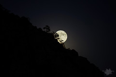 Harvest Moon (cll) Tags: full harvest moon kolob terrace road zion national park nighttime utah