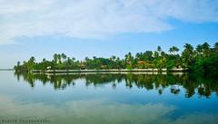 Enchanthing Kerala - Cherai Back Waters, Kochi (Babish VB) Tags: cherai kochi godsowncountry kerala keralatourism keralaclicks cheraibeach clubmahindra indriya resort backwaters travel tourism tour theindiatree