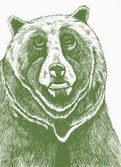 Grizzly (esarempee) Tags: bear green illustration pen ink grizzly