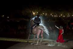More Horse Dancing (garrettpalm) Tags: spain seville flamenco horsedance