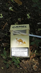 Pack of cigarettes, Ukraine (k.dmitrijewa) Tags: summer macro closeup sticker ukraine smoking camel crimea antismoking 2012   kerch   kertch