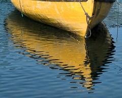yellow dory