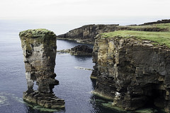 Yesnaby, Orkney, Scotland (bm^) Tags: uk light colour tourism nature licht scotland orkney nikon raw unitedkingdom stack gb gras stacks reportage reizen schotland klif kleur yesnaby toerisme kliffen planart1450 d700 planar5014zf  bestandstype
