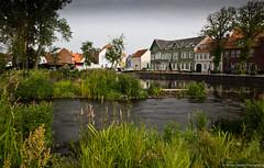 Tnder Vid (buckeyemilton) Tags: city flowers trees fish flower canon denmark filter nd hoya tnder vid houting snbel