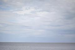 Gimli (home is wherever i'm with you) Tags: beach water 50mm horizon icelandicfestival gimlimb