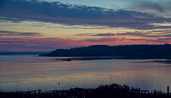 Working Boat, Tacoma [Explore] (tacoma290) Tags: morning sky reflection bay nikon pacificnorthwest tugboat pilings tug pnw commencementbay workingboattacoma explore07aug12