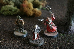Rogue Trader surface operation (gnomemad) Tags: miniatures rogue trader
