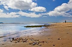 Shoreline (EionaR.) Tags: carmarthenshire wfc coasts burryport