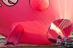 When Pigs Fly (Sharon Drummond) Tags: travel ohio hot pig airport unitedstates air hotair balloon marysville balloonfest whenpigsfly allohioballoonfest2012