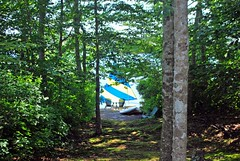 Summer Idyll (Lochaven) Tags: trees light summer lake sailboat capecod sunfish nikonflickraward mbpictures