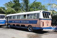 DE140 (chairmanchad) Tags: bus fiji hino albion leyland nadigeneral fijibus