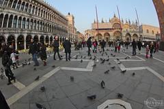 Piazza San Marco (rbpdesigner) Tags: italien venice italy slr veneza europa europe italia venise venecia venezia venedig italie venetia itlia piazzasanmarco adriaticsea stmarkssquare veneto   northernitaly  llens gulfofvenice nortedeitalia mareadriatico vneto venetien canonllens comunedivenezia vntie maradritico vneto    venezsia lentel canonef1635mmf28liiusm venetoregion canoneos5dmarkii marmediterrneo velhomundo praadesomarcos comuneitaliano adriatischesmeer italiasettentrionale italiedunord   5dmkii  velhocontinente nortedaitlia piazzasanmarcosanmarcoveneziavenetoitalia regiodevneto golfodeveneza golfvonvenedig golfodevenecia golfedevenise meradriatic atlnticooriental nordestdelitalie nordestedaitlia northeastofitaly altaitlia altaitalia  italiaseptentrional itliasetentrional